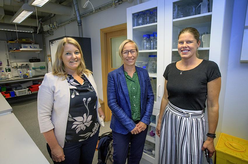 Lisa Buvall, Pernille Laerkegaard Hansen och Kerstin Ebefors