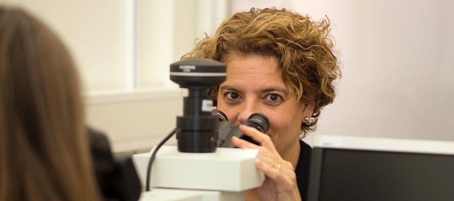 2019 - Ingrid Hedenfalk - mikroskopering