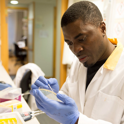 2019 - Ruth Palmer - Cancer - DNA-sekvens